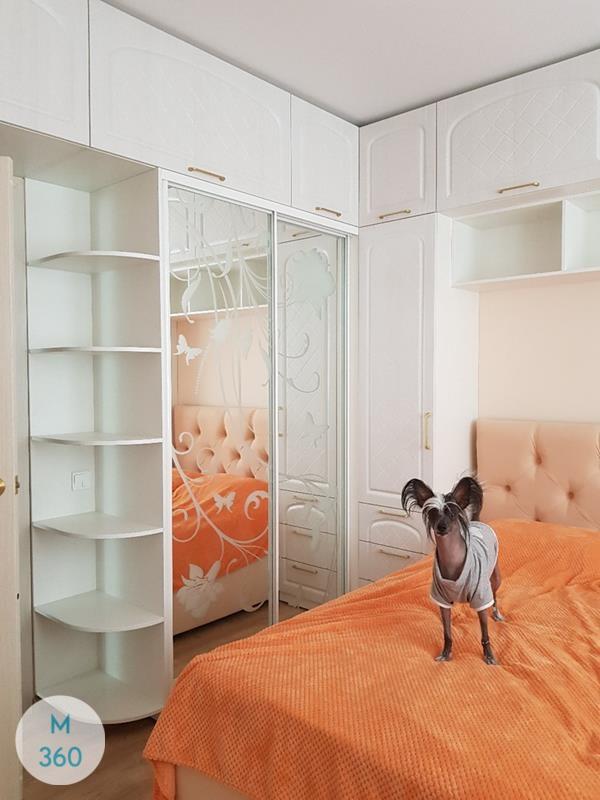 Встроенный шкаф купе Ижевск Арт 001043302